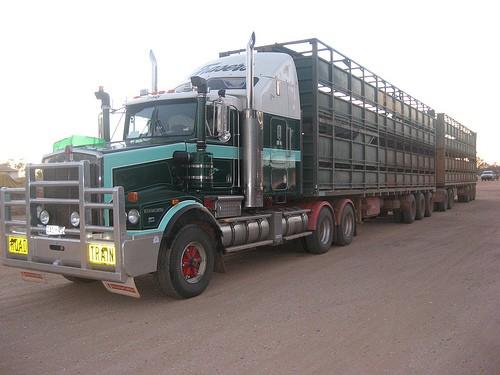 Stock Truck Insurance