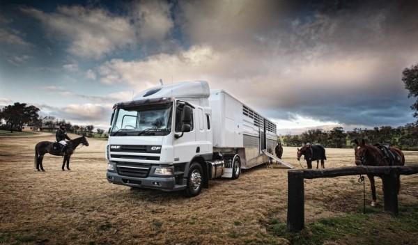 Horse Transport Insurance