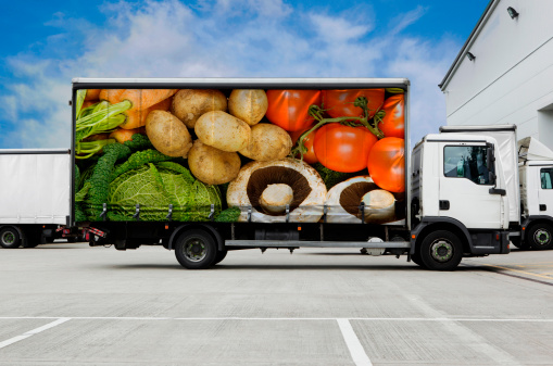 Perishable Cargo Insurance: Top Concerns to Ask Your Insurance Broker