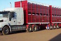 B Double Cattle Trailer