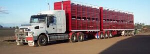B Double Cattle Trailer