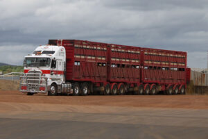 B Triple Cattle Trailer