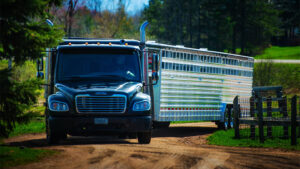 featherlite-livestock-trailers-9161