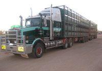 Livestock Truck Insurance